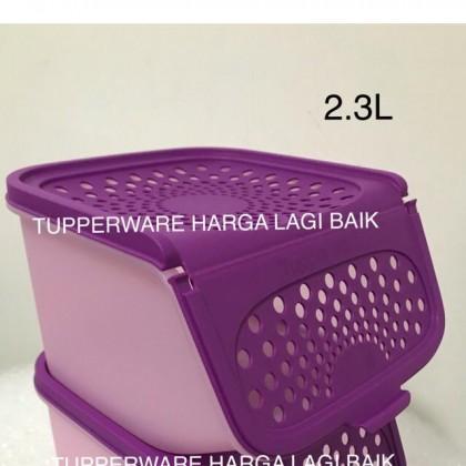 Tupperware Garlic Keeper (Accessmate)