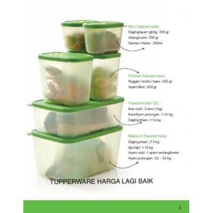 BIG SALESTupperware Fresh Mint Set (Freezermate)